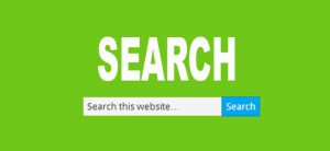search bar in site
